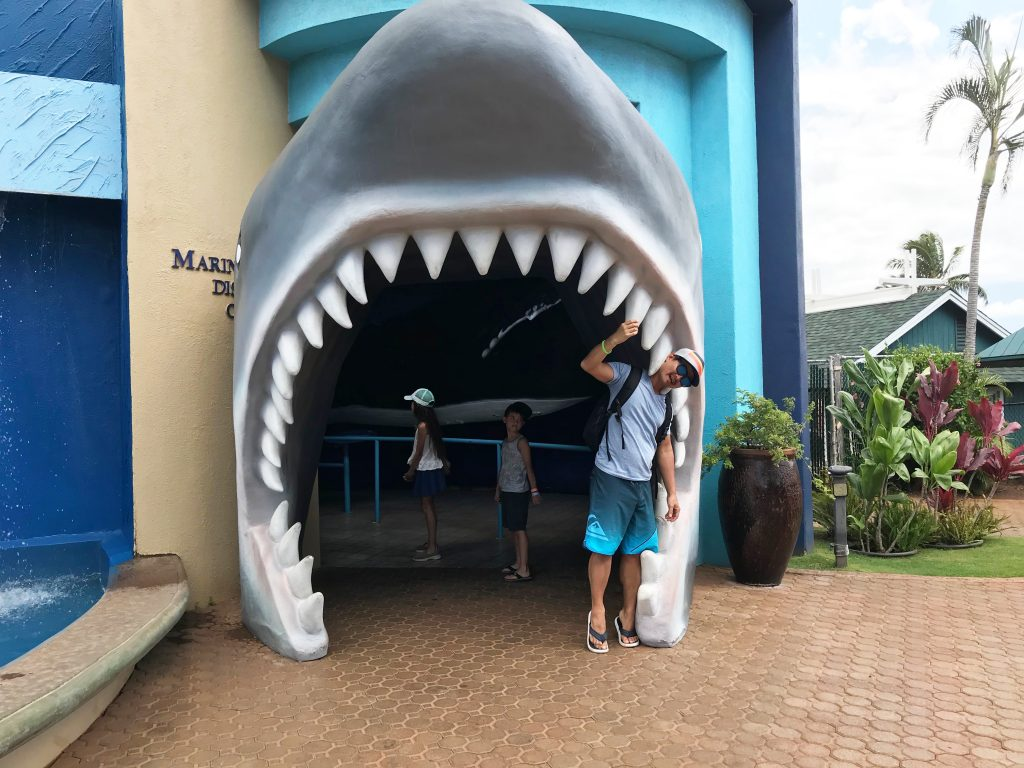 Maui Ocean Center Shark