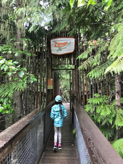 ZipTreck TreeTrek entrance