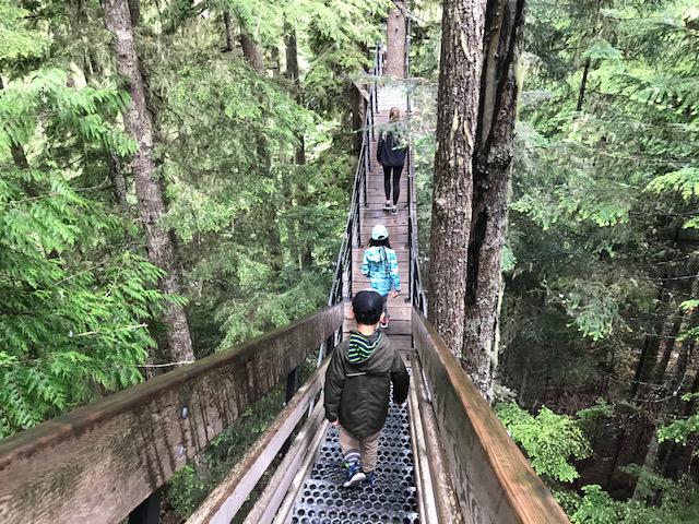 ZipTrek TreeTrek Canopy Walk