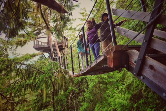 TreeTrek Canopy Walk review